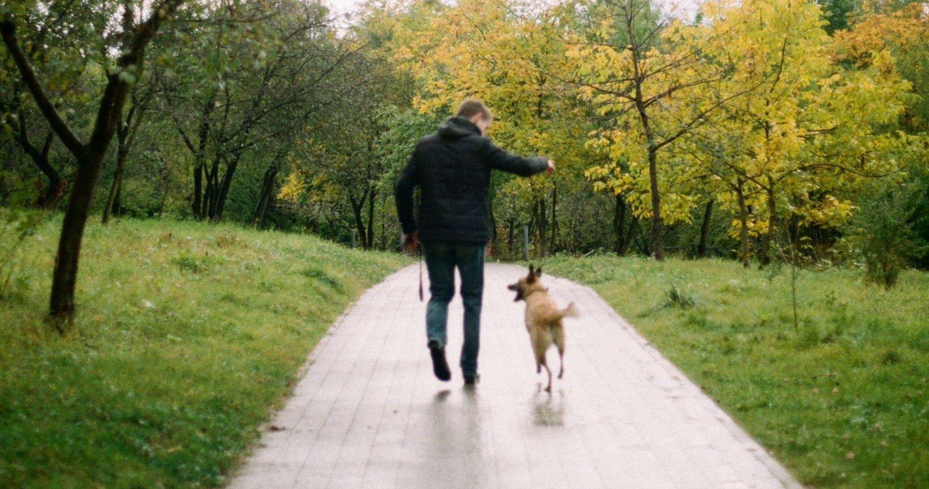 Willeasy per gli animali